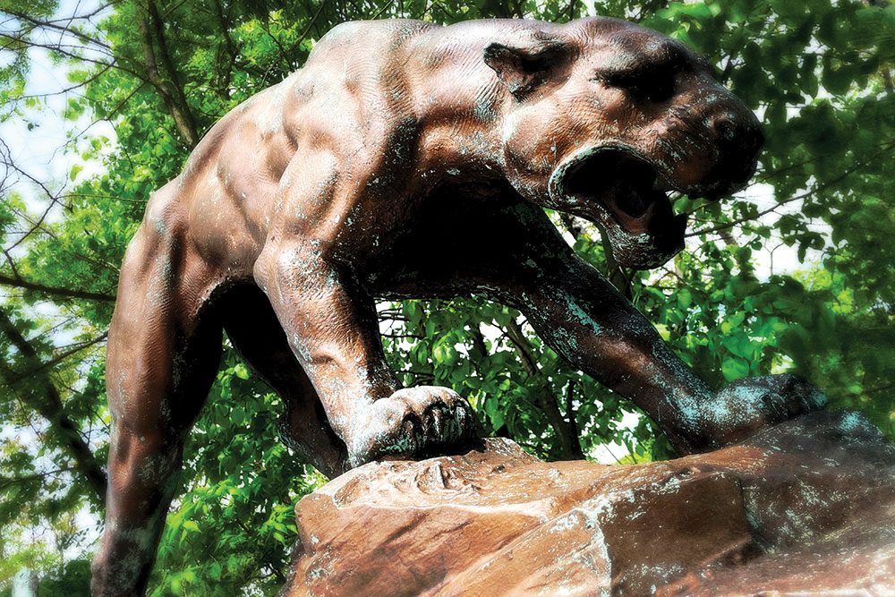Panther Jul21
